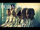 Shami ft Майк Чек ft M one - Подари жизнь