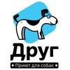 """Приют """"ДРУГ"""" для бездомных собак в СПб"""