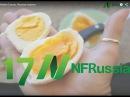 №18 Польза яиц и размер холестерина Доктор Майкл Грегер Русская озвучка