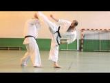 Karate Kyokushinkai enchainements de combat par Alexandre PICHKUNOV