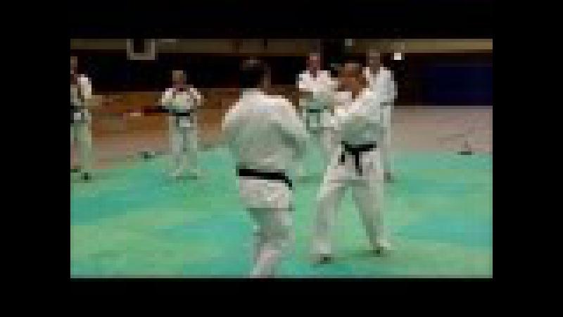 Ju Jutsu Master Serie 56 Stock und Messer Abwehr