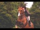 Страха в реальности нет конный спорт