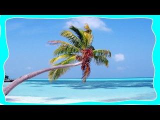 ТОП 10 САМЫХ лучших пляжей в мире