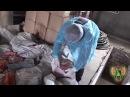 В Суземке пресечена попытка незаконного ввоза животноводческой продукции
