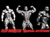 Flex Wheeler: