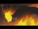 Наруто 2 сезон 281 серия (Ураганные хроники, озвучка от Ancord)