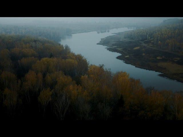 Вася Обломов Трагедия официальное видео