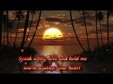 Andy Williams-Speak Softly Love(Lyrics)