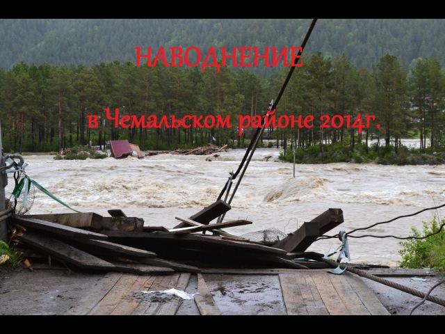 чемал наводнение 2014