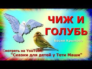 Басня Крылова Чиж и голубь.  Сказки для детей читает Тетя Маша