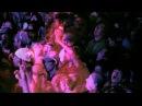 TURTLE ISLAND「この世讃歌」-Video Edit Version-