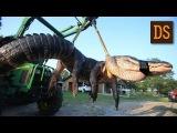 Гигантский аллигатор застрелен во Флориде. На жестовом языке