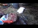 Война на Украине. Военная хроника (в двух частях)