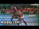 George Foreman vs Joe Frazier BOXING VINES by UZHEGOV