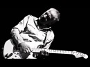 ROBIN TROWER THE THRILL IS GONE ROOTS AND BRANCHES NEW ALBUM