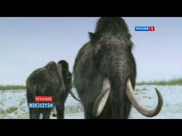 Клонирование вымерших мамонтов Mammoths cloning