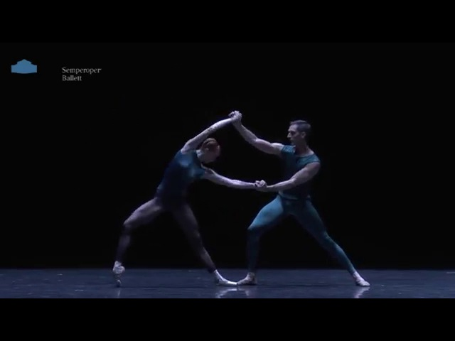 In the Middle, somewhat Elevated - Sylvie Laurent Pas de Deux