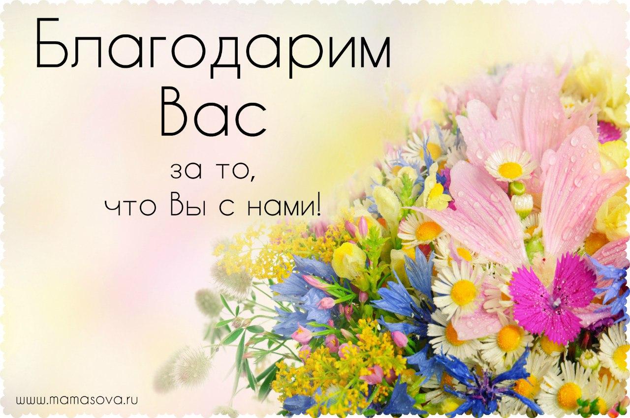 благодарим цветы