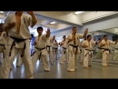Kazuo Miyoshi Karate Kyokushin Seminar New York June 7th 2014