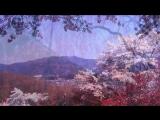Uttara-Kuru - Winter Dance