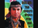 Sublime Frequencies Molam Thai Country Groove From Isan Vol 2