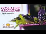 Шри Шри Рави Шанкар Сознание и окружающая среда. Беседа Sri Sri Ravi Shankar