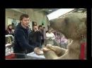 медведь Степа mpg