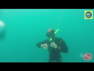 Фридайвинг в Черном море | Free diving in the Black Sea