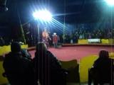Цирк-Шапито
