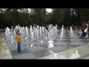 Сегодня в парке Горького в Казани. Мало им дождя, так они еще и в фонтан норовят залезть!