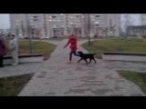 Занятие с Дарком )
