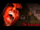 Don't Starve: The Screecher. Человек-голубь