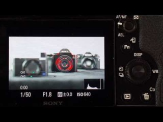 Focus Peaking and Magnify Focus - Sony Alpha Tutorial