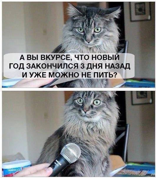 http://cs629303.vk.me/v629303025/289e6/m2lomaDPR04.jpg