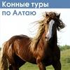 Конные туры, конные походы по Алтаю. Туроператор