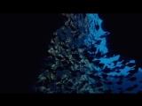 BBC Заколдованное Королевство / Зачарованное королевство / Enchanted Kingdom 2014 HD Омикрон