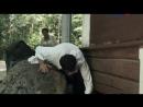 Маяковский. Два дня (2011) 4 серия