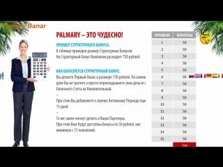 PALMARY TRAVEL - ФОРСИРОВАННАЯ ПРОГРАММА, МАРКЕТИНГ КОМПАНИИ, РАСПРЕДЕЛЕНИЕ СРЕДСТВ - ДОХОДЫ!