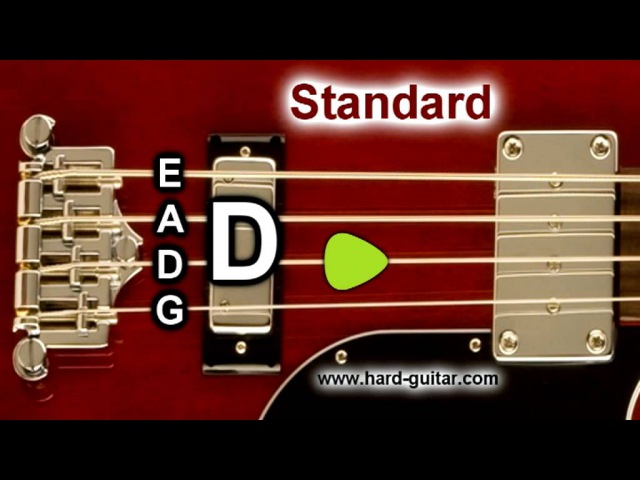 Bass Guitar Tuner - E Standard Tuning (E A D G) 4 Strings