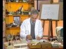 Химия 19. Элемент кальций — Академия занимательных наук