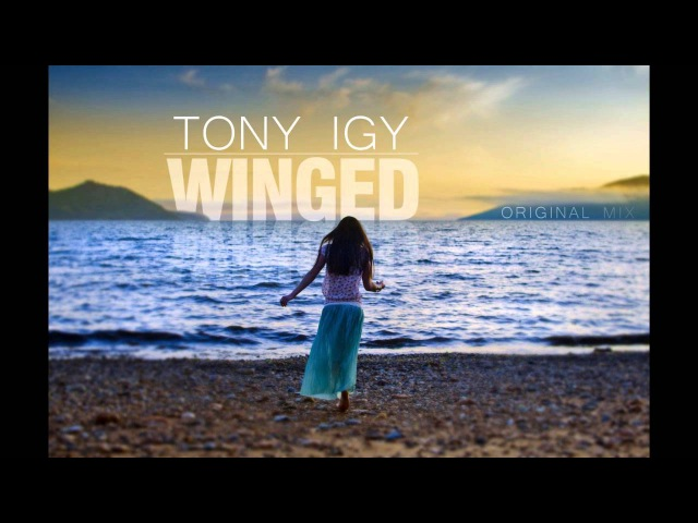 Tony Igy - Winged 2014