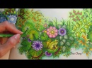 SECRET GARDEN Prince Frog's Magical Pond Coloring With Colored Pencils