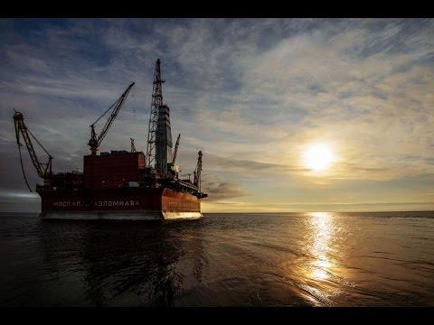 Первая арктическая