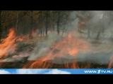Сжигать сухую траву и любой мусор, а также разводить костры на полях в России отныне запрещено
