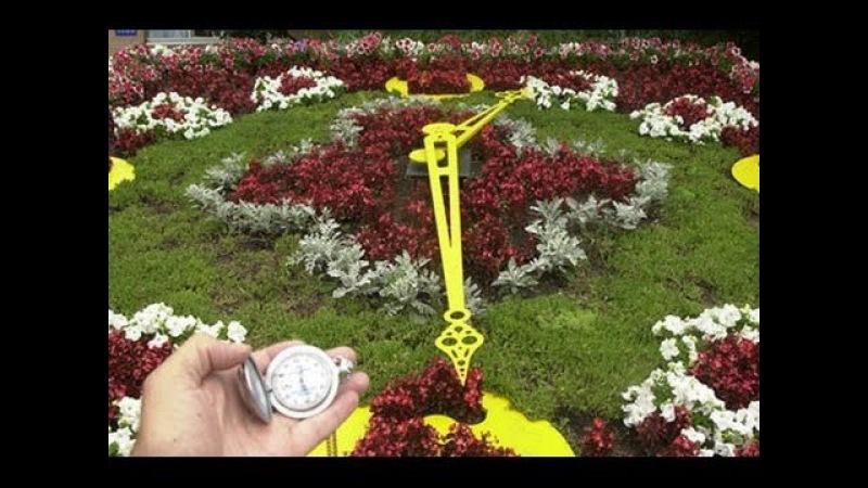 Игорка Счастливый - Время любить ! Время думать ! Время жить !