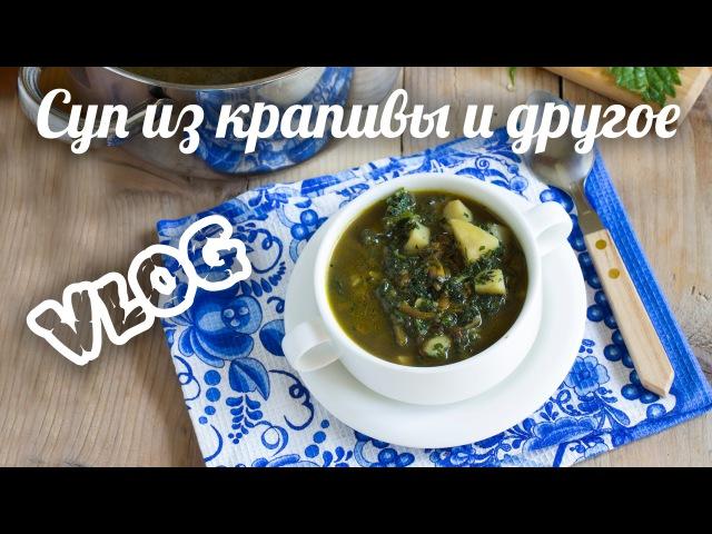 Влог. Суп из крапивы, желе на агаре, печёные яблоки и другая еда