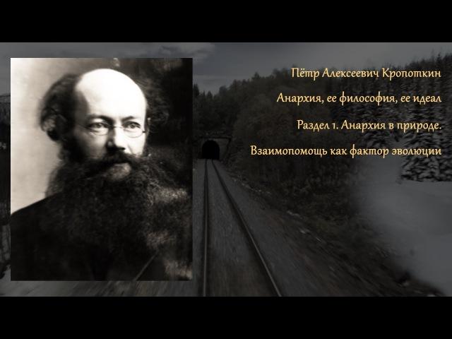 П А Кропоткин АнархияⒶ Раздел 1 Анархия в природе Аудиокнига
