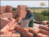 012 Возведение стен дома и оборудование бассейна