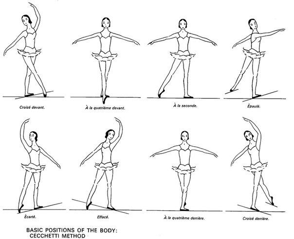 Позиции рук и ног в классическом танце