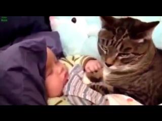 Приколы про детей,дети с животными